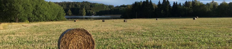 MTK-Lohjan seutu ry